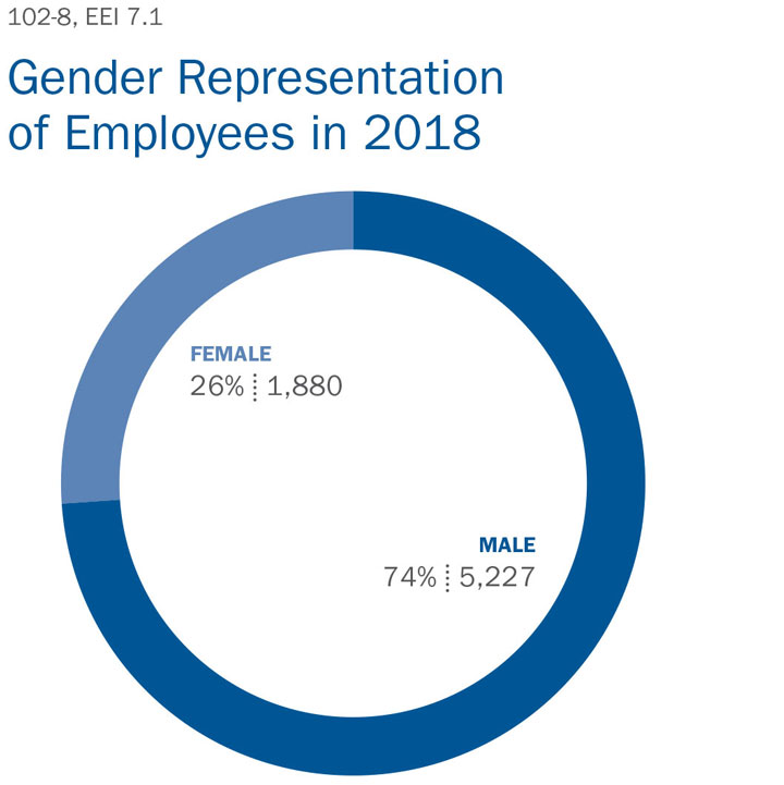 Gender Representation of Employees in 2018 Chart